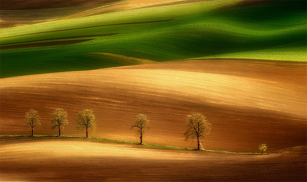 41. On the Field`s Appeal - 50 Mind-Blowing Examples Of Landscape Photography Bored Panda
