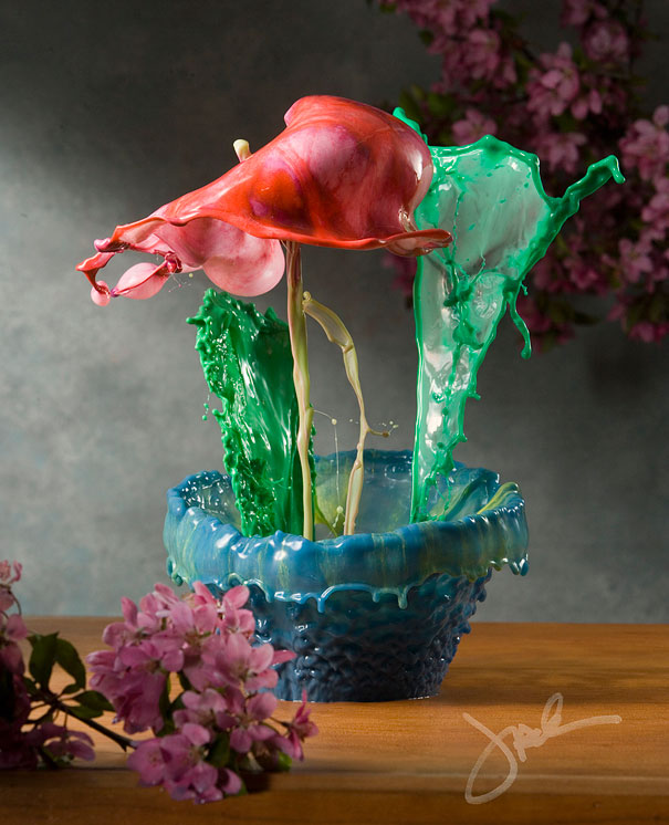Incredible Water Splash Flowers by Jack Long