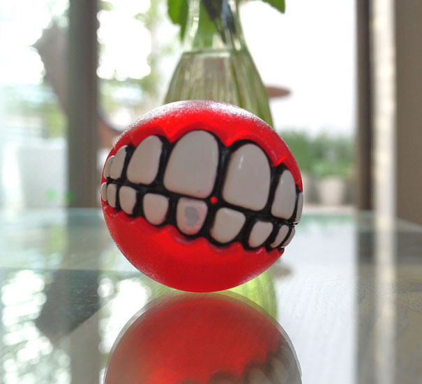 Funny Fetch Ball Gives Your Dog a Hilarious Grin