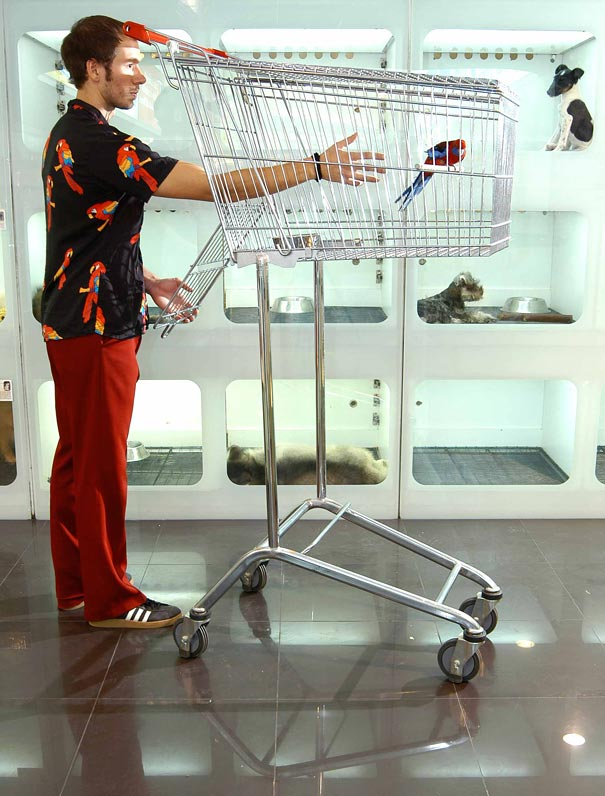 cool shopping cart chicken sebastian carts organic errazuriz creative unusual trolley birdcage swing panda