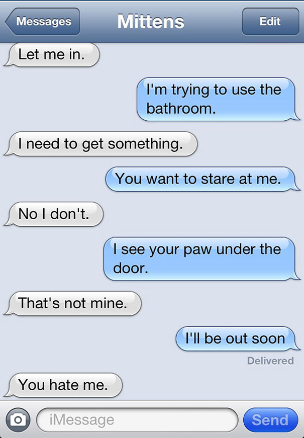 Texts From Mittens What If Cats Could Text Bored Panda - Dogs able text 30 hilarious texts dogs
