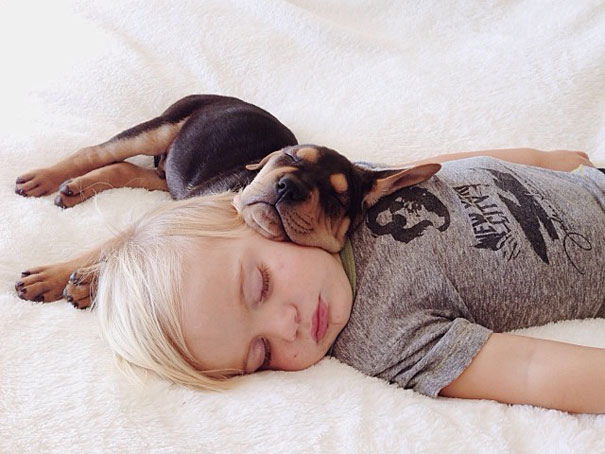 Toddler Takes Daily Naps With His Adopted MonthOld Puppy - Toddler naps with puppy