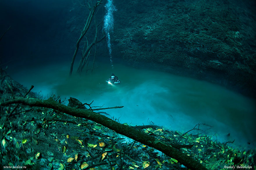 Hidden Underwater River Flowing Under the Ocean in Mexico