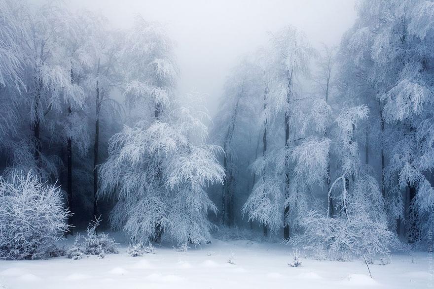 20 breathtaking photos of winter landscapes bored panda